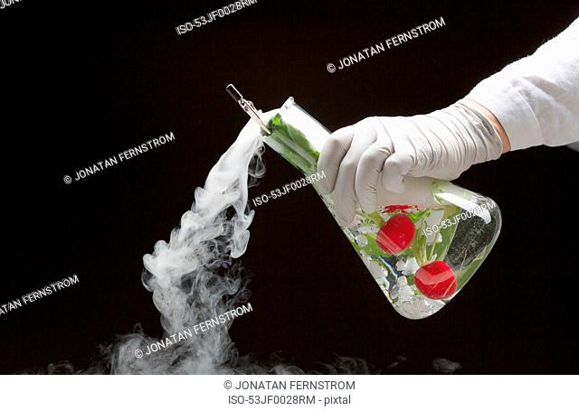 Scientist experimenting with fruit