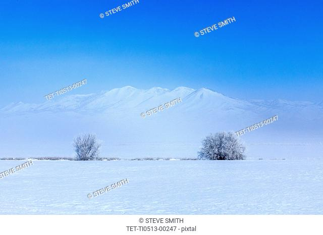 Field and mountains during winter in Fairfield, Idaho