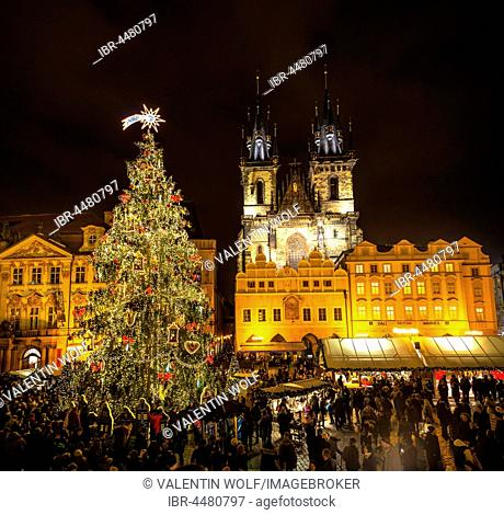 Tyn Cathedral, Christmas market on the Old Town Square, night scene, historic centre, Prague, Bohemia, Czech Republic