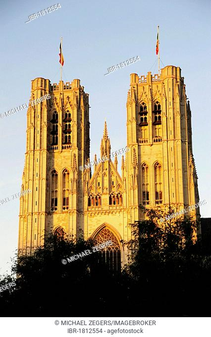 Gothic Cathedral St-Michel, St. Michiels-Kathedraal, Place St. Gudule, city centre, Brussels, Belgium, Benelux