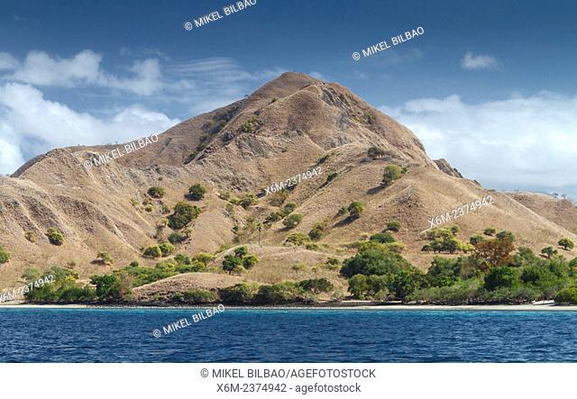 Komodo island. Komodo National Park. Indonesia, Asia