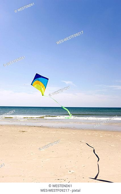 Germany, Baltic sea, Kite flying on beach