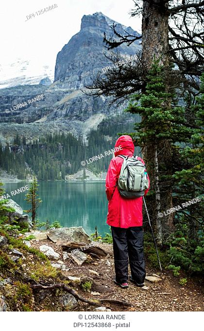 Female hiker at Lake Oesa, Yoho National Park; British Columbia, Canada