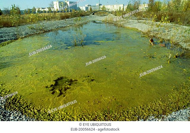 Evacuated city and contaminated area after the Chernobyl nuclear disaster