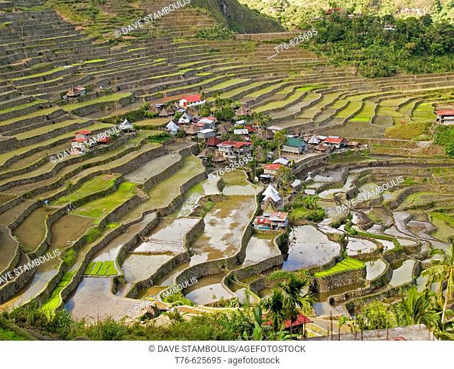 View of Batad and its amazing rice terraces, Philippines, a UNESCO World Heritage Site
