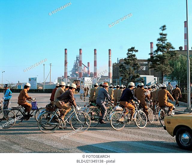 human, plant, bicycle, people, film