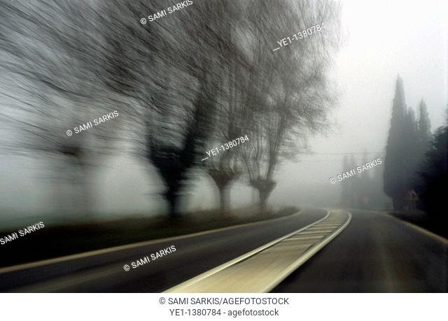 Blurry bare trees visible through the fog seen from a speeding car, Carpentras, Provence, France