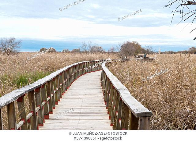 National Park Las Tablas de Daimiel. Ciudad Real. Spain