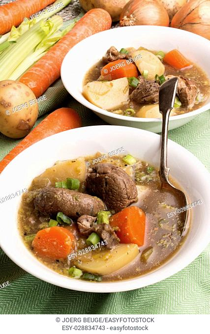 home made traditional irish lamb stew with potato, carrot, celery and spring onion in a white bowl