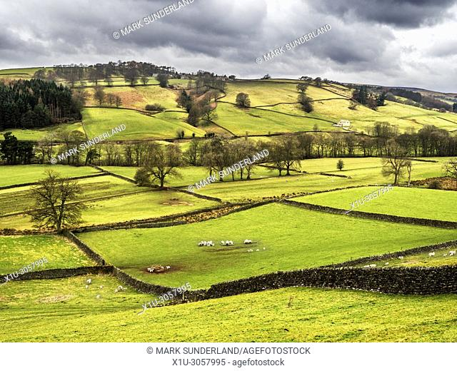 Nidderdale from Wath Road near Pateley Bridge North Yorkshire England