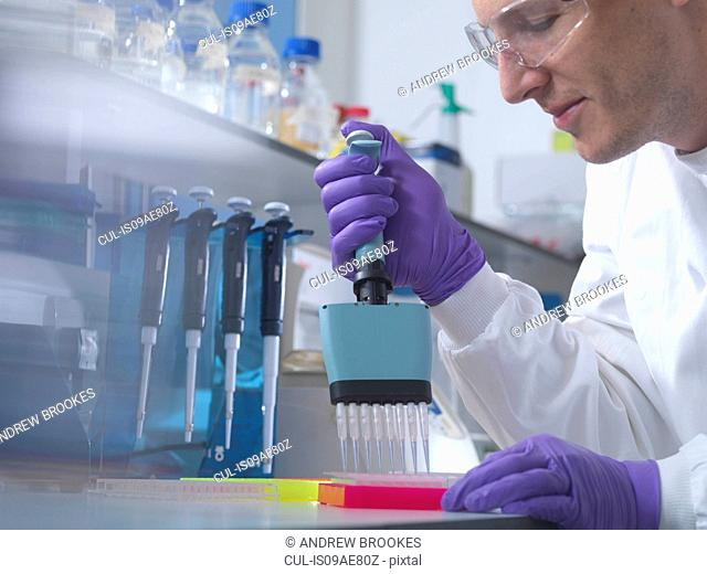 Male researcher using multi pipette in lab