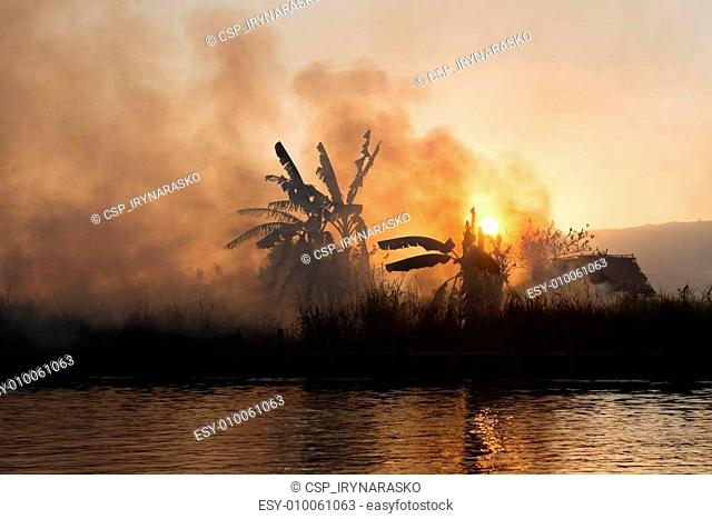 Fire and smoke on tropical fields