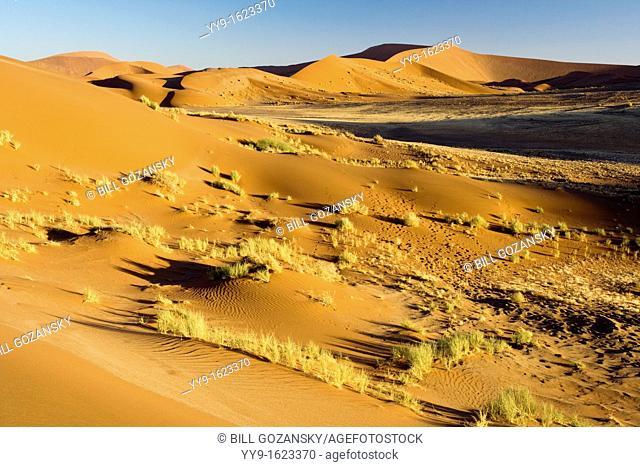 Dune Patterns - Sossusvlei National Park - Namib-Naukluft National Park, Namibia, Africa