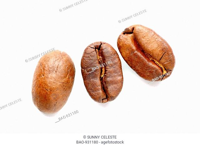 roasted coffee-beans, coffea spp, coffea arabica