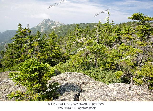 Mount Chocorua from Middle Sister Trail in the White Mountains, New Hampshire USA on a early hot and hazey summer day  Pieces of the old fire tower on Middle...