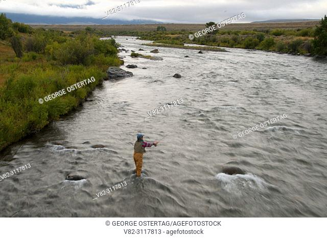 Madison River flyfishing, Three Dollar Bridge Fishing Access Site, Montana