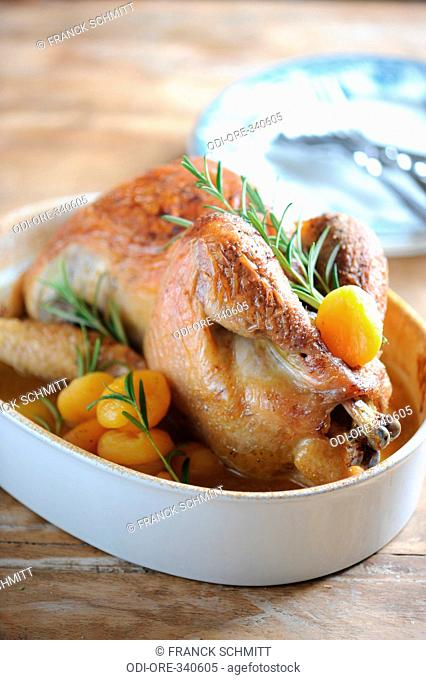 Guinea-fowl with dried apricot