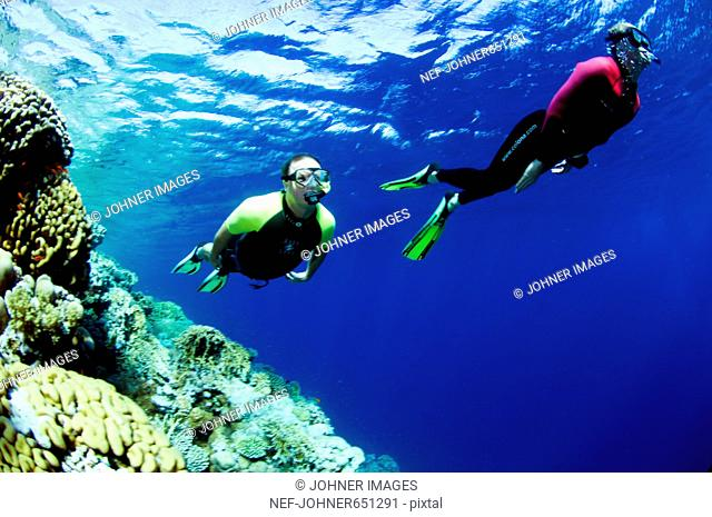 Two people snorkling, Egypt