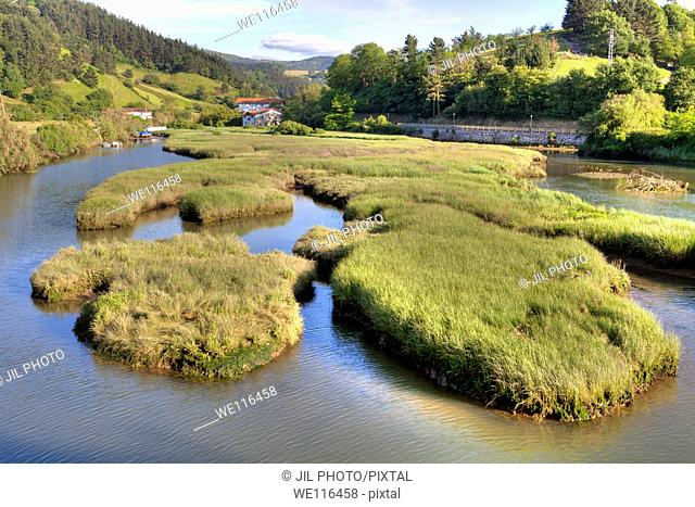 Santiago Stream  Tributary of the River Oria  Orio, Gipuzkoa, Basque Country  Spain  Europe