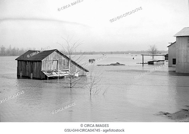 View of Flood from Train en route to Forrest City, Arkansas from Memphis, Tennessee, USA, Edwin Locke for U.S. Resettlement Administration, February 1937