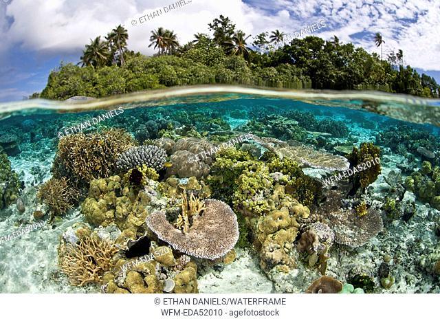 Lagoon of tropical island, Melanesia, Pacific Ocean, Solomon Islands