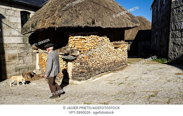 Traditional Horreo with teak roof and wood stacked to prevent it from getting wet in Piornedo de Ancares. The Ancares. Lugo. Galicia. Spain