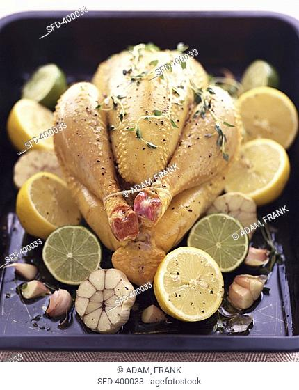 Whole chicken with citrus fruits & garlic in roasting tin