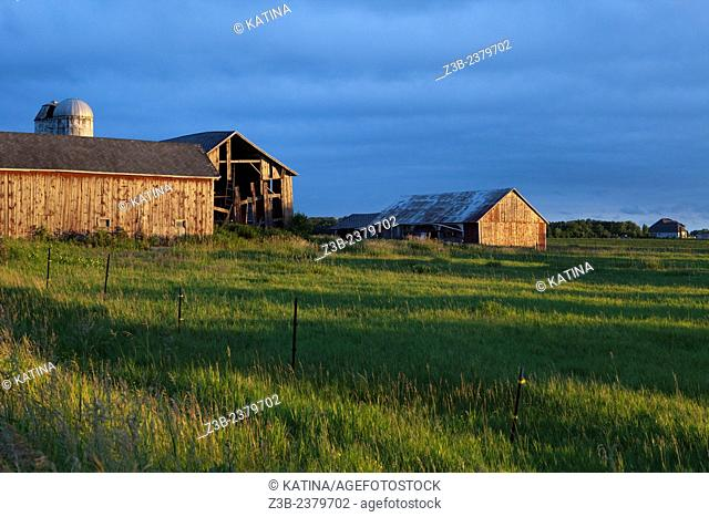A weathered barn in sunset light in the countryside of Mount Pleasant, Michigan, USA