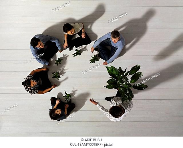 Group of people on floor with plants