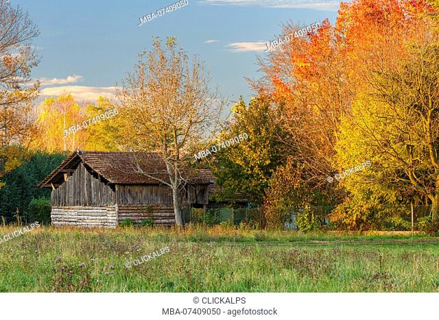 Autumn in a countryside, Como province, Lombardy, Italy, Europe
