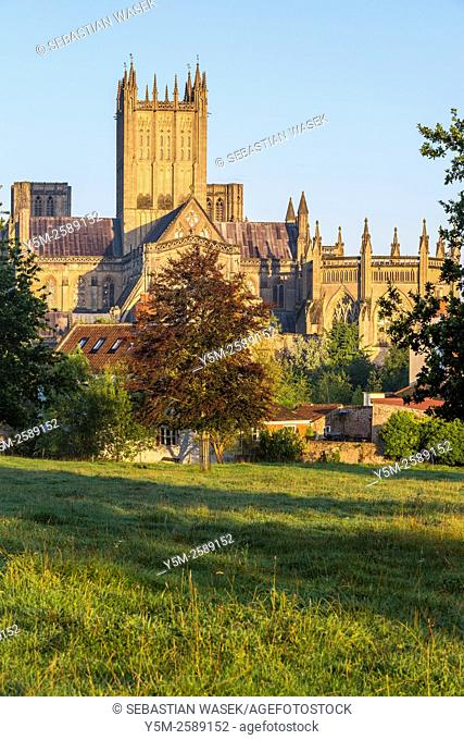 Wells Cathedral, Somerset, England, United Kingdom, Europe