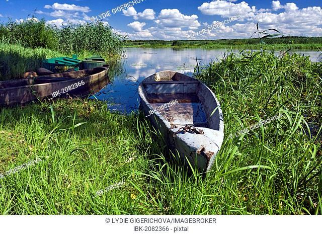 Boats and Narew River near Bokiny village, Narwianski National Park, Poland, Europe