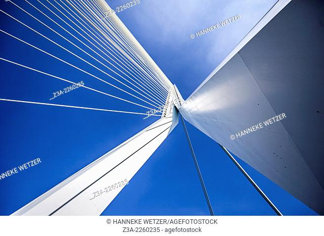 Erasmus Bridge (Dutch: Erasmusbrug) is a cable-stayed bridge across the Nieuwe Maas, linking the northern and southern regions of Rotterdam, Netherlands