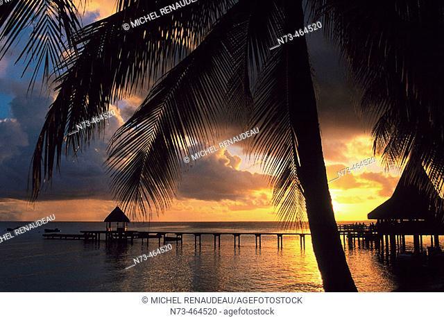 Rangiroa. Tuamotu archipelago. French Polynesia