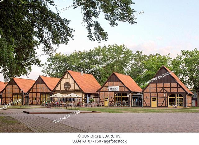 Timber framed houses (barns). Steinhude, Lower Saxony, Germany