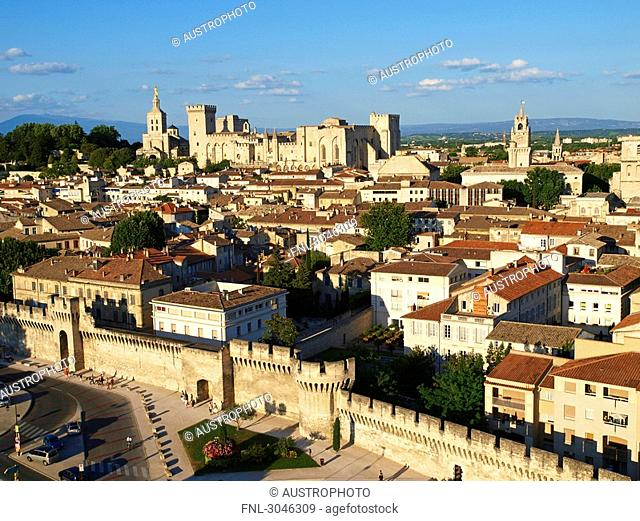 Cityscape of Avignon, Palais des Papes in the background, France, high angle view