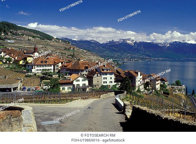 Lavaux, Switzerland, Vaud, Lake Geneva, Alps, Europe, Narrow road leads down to the picturesque village of Rivaz surrounded by vineyards along the lakeshore of...