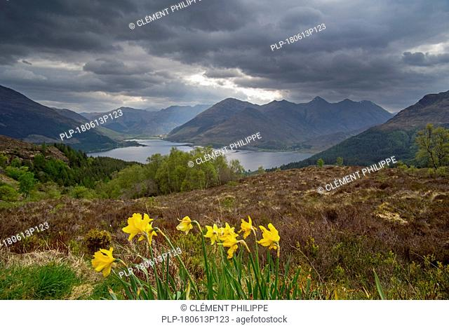 View over Loch Duich and the mountain summits of the Five Sisters of Kintail from Bealach Ratagain / Ratagan viewpoint, Highland, Scotland, UK