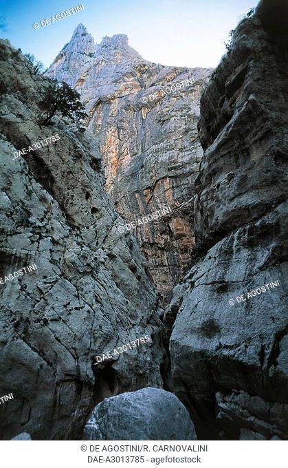 Gorropu gorge, National Park of the Gulf of Orosei-Gennargentu, Sardinia, Italy