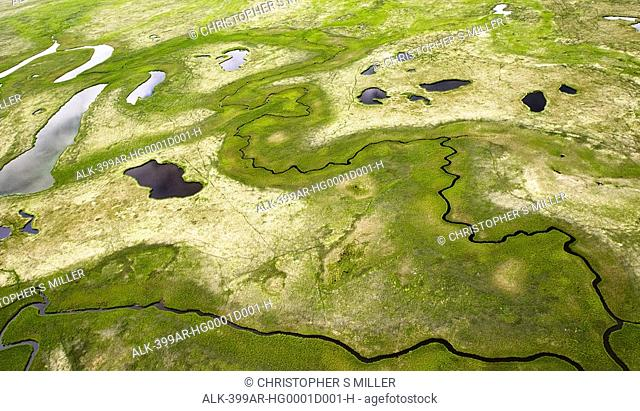 Aerial of lakes and streams crisscrossing the Arctic tundra near the village of Egegik, Bristol bay, Alaska, Summer