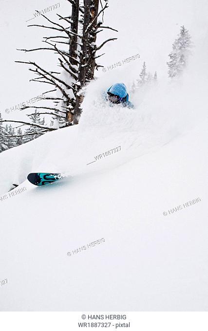 Snowboarder makes a powder turn, Innsbruck, Tyrol, Austria