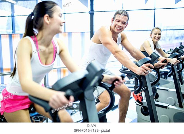 MODEL RELEASED. Young men and women working out on exercise machines in gym, smiling