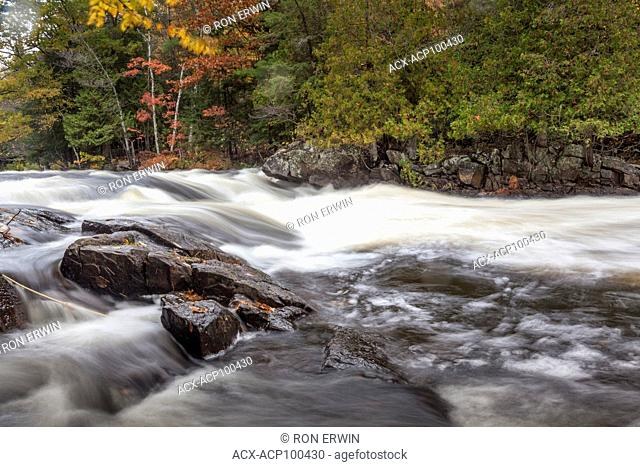 Fall colours on the Oxtongue River, Oxtongue Rapids Park, near Dwight, Ontario, Canada