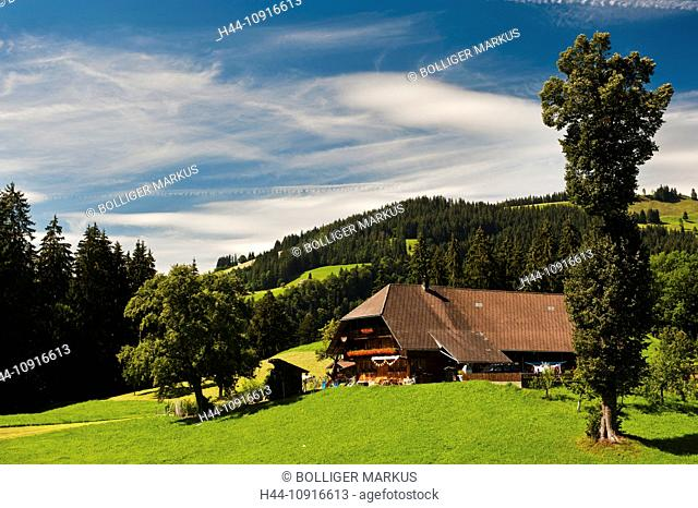 farm, farm house, farmstead, grassland, mountain farmer, Emmental, canton Bern, landscape, scenery, agriculture, farming, Switzerland, pre-Alps, pasture