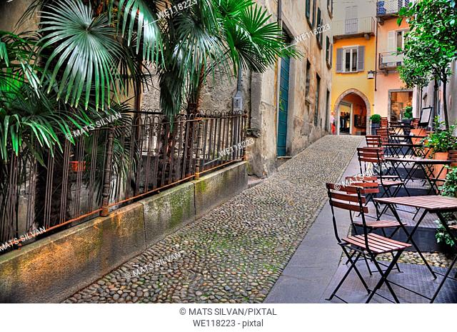 Alley with palm trees and tables