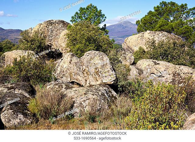 Casillas peak in the Sierra de Gredos from Peña Halcón in Cadalso de los Vidrios  Madrid  Spain