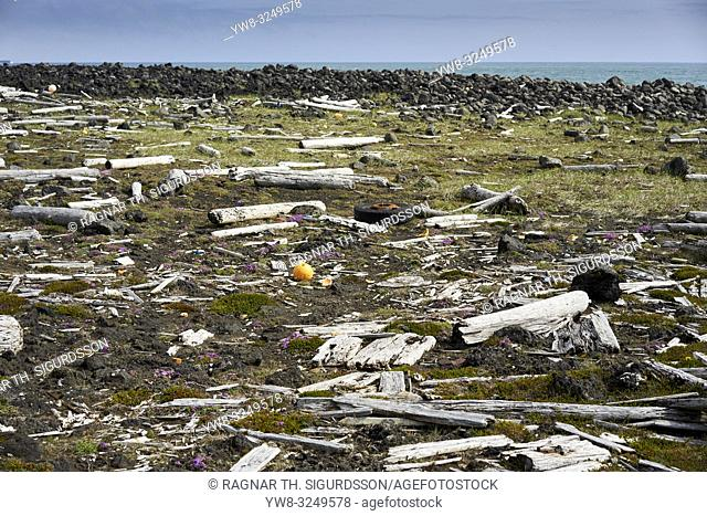 Drifwood and garbage, Reykjanes Peninsula, Iceland