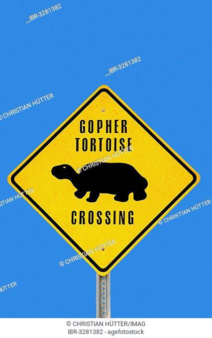 Warning sign, gopher tortoises crossing the road
