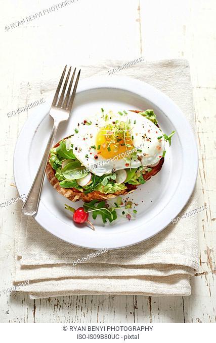 Avocado toast with radish, fried egg and micro greens
