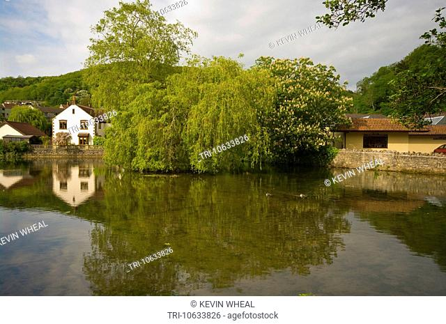 Pond Formed By The River Yeo at the Base Of The Cheddar Gorge Somerset England